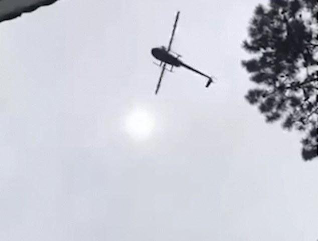 ÉSZMEGÁLL! Sertést dobtak helikopterről egy vállalkozó medencéjébe (VIDEÓ)