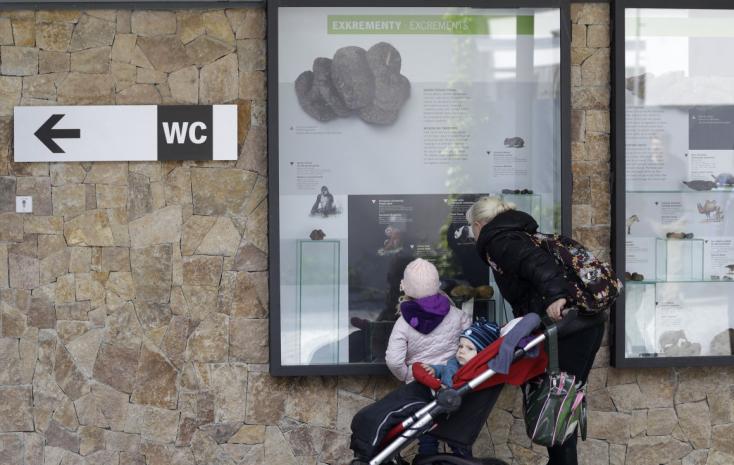 Az állatvilág ürülékeit bemutató állandó kiállítás nyílt!