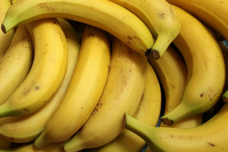 Kecskében és banánban is kimutatták a koronavírust, felfüggesztették a laborok vezetőjét
